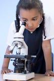 Ragazza del banco dell'afroamericano che per mezzo del microscopio Immagini Stock
