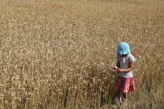 Ragazza del campo di cereale Fotografia Stock Libera da Diritti