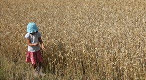 Ragazza del campo di cereale Fotografie Stock Libere da Diritti