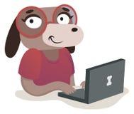 Ragazza del cane del nerd che per mezzo di un computer Immagini Stock Libere da Diritti