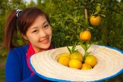 Ragazza del giardiniere in giardino arancione, Nord della Tailandia Fotografia Stock Libera da Diritti