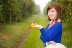 Ragazza del giardiniere in giardino arancione, Nord della Tailandia Fotografie Stock