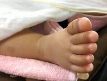 Ragazza del piede del bambino Fotografie Stock