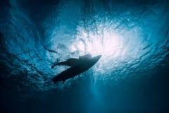 Ragazza del surfista con il tuffo del surf subacqueo con l'onda di oceano di sotto immagini stock libere da diritti