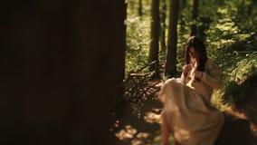 Ragazza delicata che si siede a piedi nudi nel legno carpatico e che pettina le sue trecce stock footage