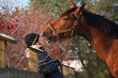 Ragazza dell'adolescente e cavallo di baia che si abbraccia Immagini Stock