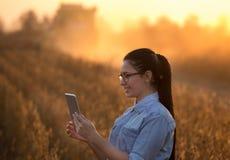 Ragazza dell'agricoltore con la compressa e la mietitrebbiatrice Fotografie Stock Libere da Diritti