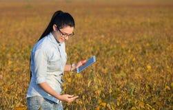 Ragazza dell'agricoltore con la compressa nel giacimento della soia Immagine Stock