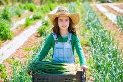 Ragazza dell'agricoltore del bambino di Litte nel frutteto del raccolto della cipolla Fotografia Stock Libera da Diritti
