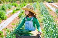 Ragazza dell'agricoltore del bambino di Litte nel frutteto del raccolto della cipolla Immagini Stock