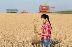 Ragazza dell'agricoltore nel giacimento di grano Fotografia Stock