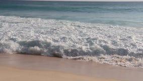Ragazza dell'oceano della sabbia dell'isola delle Seychelles stock footage