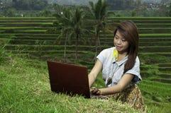 Ragazza di affari nel paesaggio del giacimento del riso. Fotografia Stock Libera da Diritti