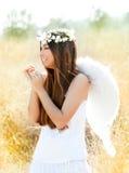 Ragazza di angelo nel campo dorato con le ali bianche Fotografie Stock Libere da Diritti