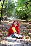 Ragazza di autunno immagini stock libere da diritti