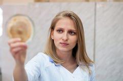 Ragazza di blondi di bellezza del ritratto del primo piano giovane in laboratorio Fotografie Stock