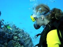 Ragazza di immersione subacquea Immagine Stock Libera da Diritti