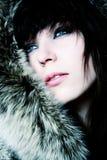 Ragazza di modo in pellicce Fotografia Stock