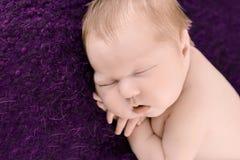 Ragazza di neonato addormentata sui precedenti viola Fotografie Stock Libere da Diritti