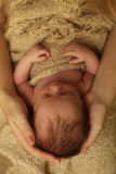 Ragazza di neonato che dorme sotto la coperta accogliente in mani della mamma Fotografia Stock Libera da Diritti