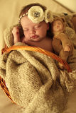 Ragazza di neonato che dorme sotto la merce nel carrello generale accogliente Fotografie Stock Libere da Diritti