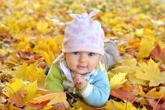Ragazza di neonato di autunno che si trova nelle foglie di acero e negli sguardi alla macchina fotografica Chiuda sul ritratto immagini stock