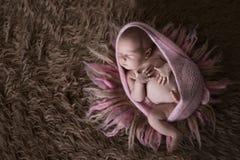 Ragazza di neonato sveglia della traversina in cappuccio rosa su lana Immagine Stock