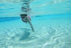 Ragazza di nuoto Fotografie Stock Libere da Diritti