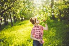 Ragazza di principessa che respira un fiore della mela alla luce di tramonto, profilo Fotografia Stock