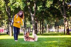 Ragazza e cane fotografie stock libere da diritti