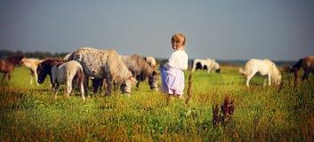 Ragazza e cavallini Fotografia Stock
