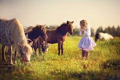 Ragazza e cavallini Immagini Stock