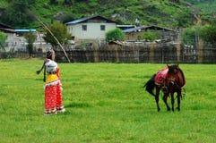 Ragazza e cavallo in prateria Fotografia Stock Libera da Diritti