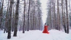 Ragazza e corvo congelati sotto la neve nella foresta stock footage