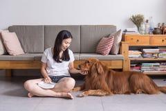 Ragazza e gatto e cane Fotografia Stock