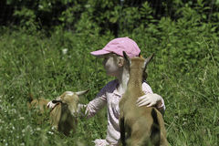 Ragazza e le sue capre care Immagini Stock Libere da Diritti