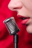 Ragazza e microfono miniatura Immagini Stock