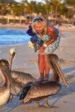 Ragazza e pellicani sull'oceano fotografia stock