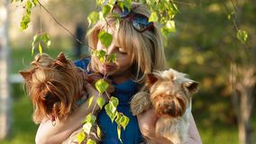 Ragazza e Yorkshire terrier video d archivio
