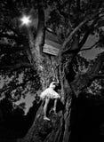 Ragazza ed albero immagini stock