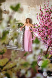Ragazza elegante in un vestito da sera lungo rosa Fotografie Stock