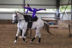 Ragazza equestre Vaulting del cavallo Immagine Stock