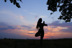 Ragazza esile che mostra le varie pose e che balla nel campo all'aperto sopra Fotografie Stock Libere da Diritti