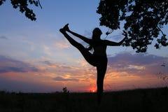 Ragazza esile che mostra le varie pose e che balla nel campo all'aperto sopra Fotografia Stock Libera da Diritti