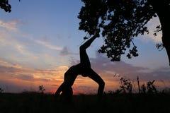 Ragazza esile che mostra le varie pose e che balla nel campo all'aperto sopra Immagine Stock Libera da Diritti