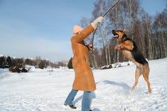 Ragazza felice che salta con il cane contro il cielo blu Fotografia Stock Libera da Diritti
