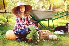 Ragazza felice del bambino con il cane dello spaniel che gioca piccolo agricoltore nel giardino di autunno e che seleziona raccol Immagine Stock Libera da Diritti
