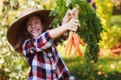Ragazza felice del bambino dell'agricoltore che seleziona il raccolto domestico fresco della carota di crescita dal proprio giard Fotografie Stock
