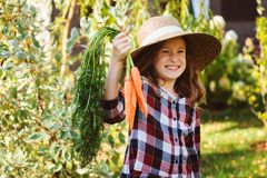 Ragazza felice del bambino dell'agricoltore che seleziona il raccolto domestico fresco della carota di crescita dal proprio giard Immagini Stock Libere da Diritti