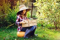 Ragazza felice del bambino dell'agricoltore con il raccolto di autunno - le zucche, le carote e lo zucchini organici hanno selezi Fotografia Stock